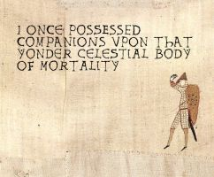 Bayeux Tapestry Meme 7 by ForgetfulRainn