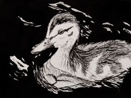 Duckling by EdgedFeather