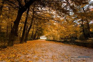 Autumn in Maksimir Park 09 II by hrvojemihajlic