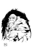 Dwarf by TimKelly