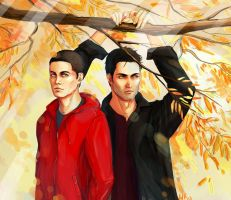 sterek5. October by Herbst-Regen