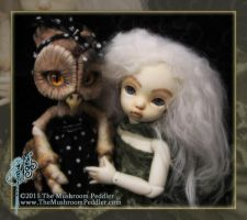 Hoot and the Fairy by TheMushroomPeddler