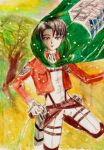 Levi Rivaille SnK by Irumi17