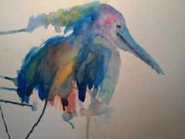 Painting of a Pelican by mayIdrawyou