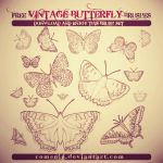 VINTAGE Cool Free Butterfly Brushes by Romenig