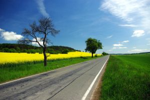 Long Road 14927520 by StockProject1