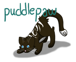 Puddlepaw the Adventurous by Little-Volii