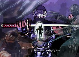 Ninja Gaiden 2 - Ryu Wallpaper by ShadowVanguard