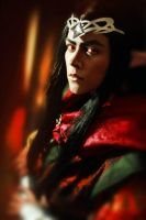 First Feanor testing - 4 by MeganeSaikoCaptains