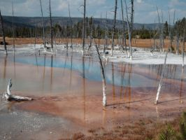 Yellowstone 5 by bloodykisses56-stock