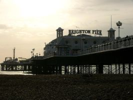 The Palace Pier by amipal