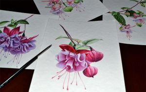 Watercolor fuchsia 2 by Rustamova