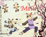 Meili character ref by Musicalmutt2