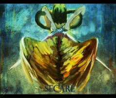 Secare by paintausea