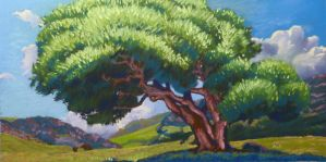 Summer Oaks Study by David-McCamant