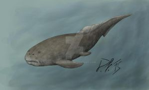 A not so scary Dunkleosteus by Pachyornis