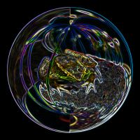 Soap Bubble Frog by Sol-Vector