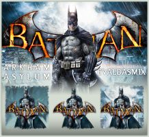 Batman: Arkham Asylum icons by evaldasmix