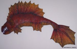 Red-Snouted Dragon Fish by Kennon9