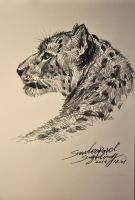 The Snow Leopard Profile by banhatin