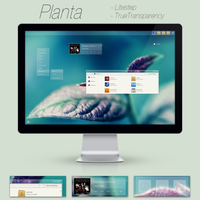 Planta by andredk
