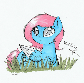 Feather Wish Concept Art by FeatherWishMLP