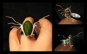 Flying Jewel Ring by LaughingScarab