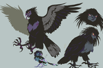 false harpy dimorphism by Spoonfayse