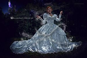 Cinderella's Transformation by DuysPhotoShoots