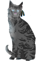Warriors: Jayfeather by NELX2