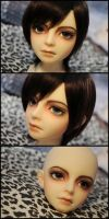 Face-up: Volks School Head A - 1 by asainemuri