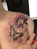 Gerbera Daisy with Butterfly by INK-SL1NG3R