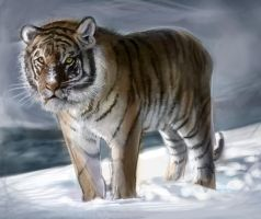 Tiger in the Snow by Firegardensuite