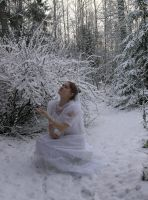 Bride in the snow 9 by Eirian-stock