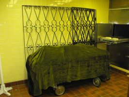 Morgue 1 by krissybdesignsstock
