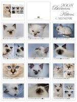 Birman Kittens - Calendar by donia