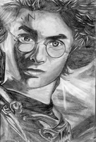 Harry Potter by BlueRose41