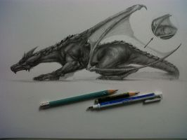 Anatomy of a Dragon by David De Leon Luis by Daviddleonluis