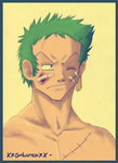 + Zoro's Injures + by Gokuran
