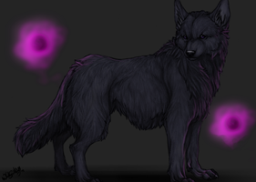 Shinayu - Grey Ghost Wolf - by WhiteSpiritWolf