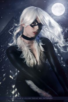 Black Cat - Marvel Comics by FioreSofen