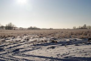 Winterscape 5 by littlewrangler