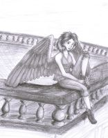 Maximum Ride: Max by shertso