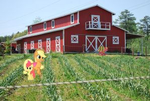 [MLP IRL] Lovely Day at the Farm by ZerOcarina