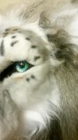 Close up of finished head by Beastworks