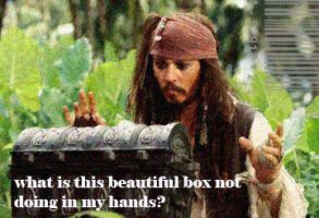 Jack Sparrow Doing His Best by masharocks