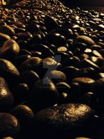 Wet river rock by Caliborn4life