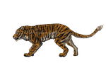 Tiger lol XD by bertc