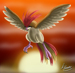 Pidgeotto by SonARTic