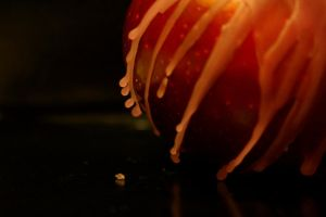 Melting Apple by DrivenSphere